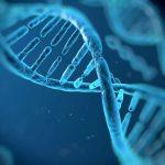 遺伝子検査キットってどれがいいんだろう?徹底比較してみました!